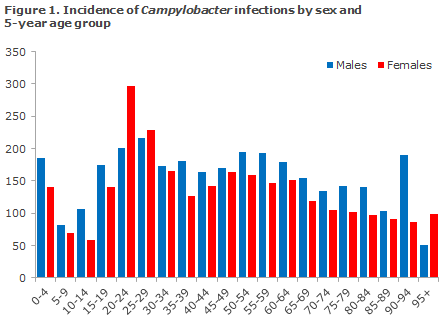 Figure 1 Incidence of campylobacter by sex and 5-year age group